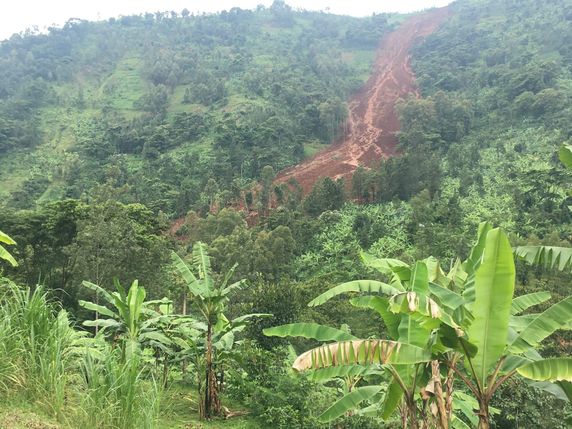 Landscape image of landslide with greenery surrounding